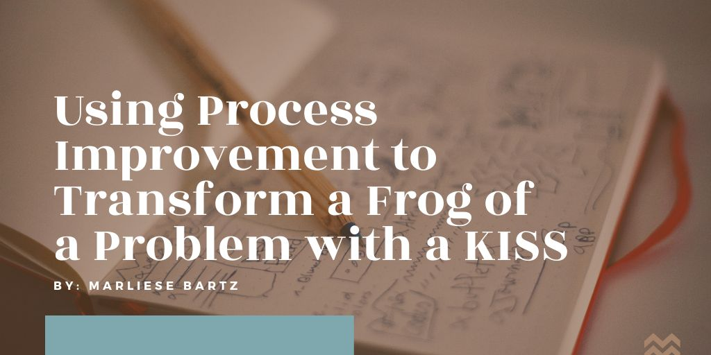 Process-Improvement-Marliese Bartz-HH